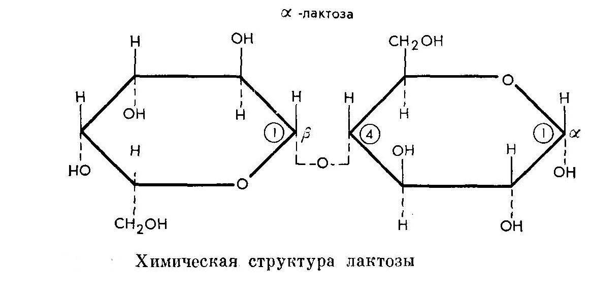 Ортофен гель инструкция по применению